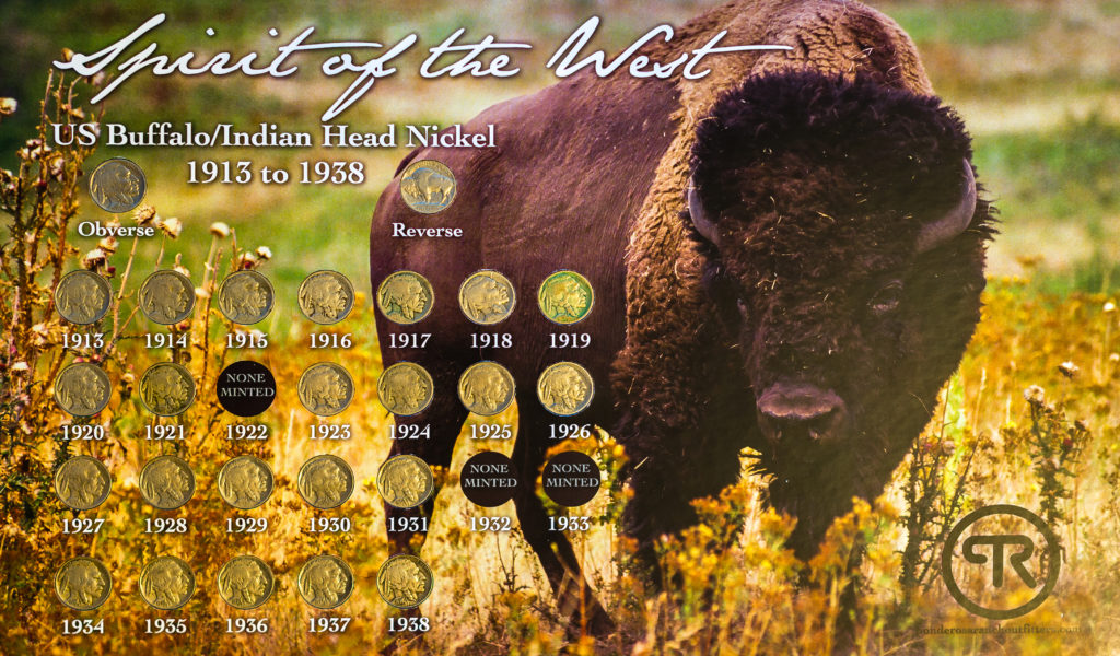 Buffalo Nickel Collection including Buffalo nickels from 1913 to 1938